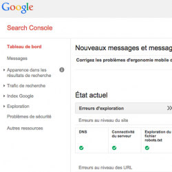 Les pirates du SEO s'attaquent à Google Search Console  | Le Net Expert Informatique