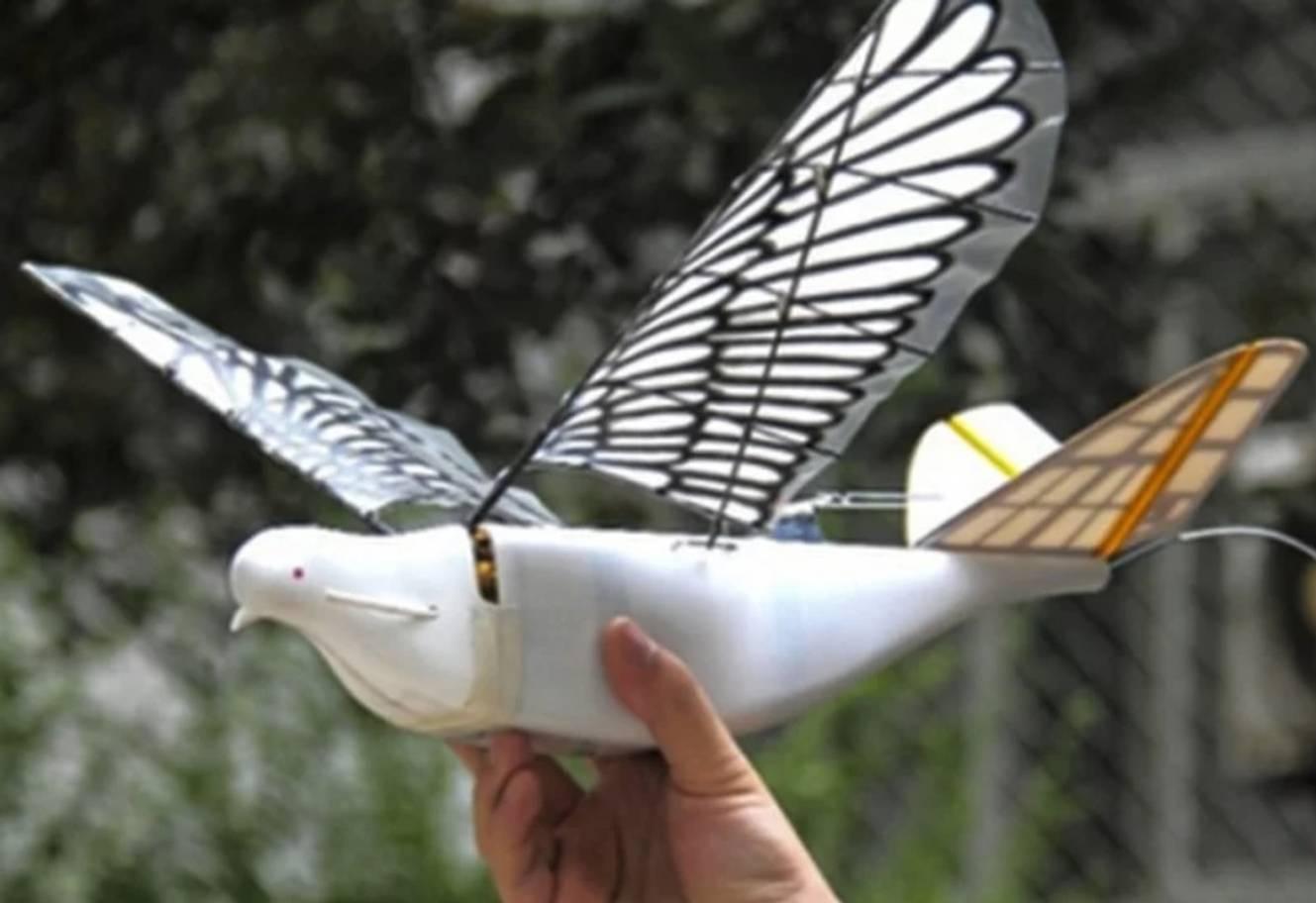 Des drones-pigeons pour espionner ses habitants